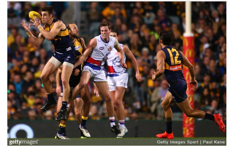 Dogs V Eagles – Full Game Notes